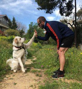 Τρέχουμε για τα ζώα Dogs Voice | Crowdfunding καμπάνια | Running Scenes