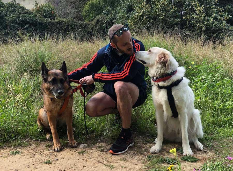 βοήθεια ζώα Sukie και Bentley